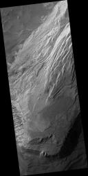 Light Layered Deposits in Valles Marineris