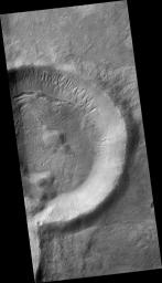 Gullies on the Exterior Wall of a Crater