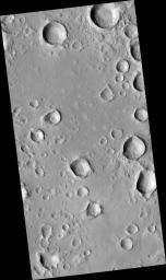 A Field of Secondary Craters