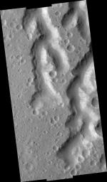 Nanedi Vallis: Tributaries and Albedo Changes