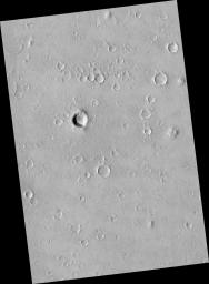 Portion of Isidis Planitia Near the Beagle 2 Landing Ellipse