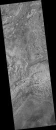 Dark-Toned Ridges in Meridiani