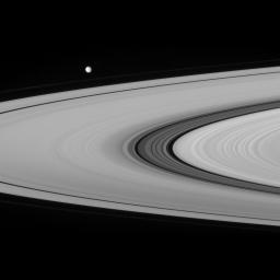 This view from NASA's Cassini spacecraft provides a crisp look at the fine material and detailed structure in the Cassini Division. Also seen rounding the ansa, or or outer edge of the rings, is Saturn's moon Mimas.