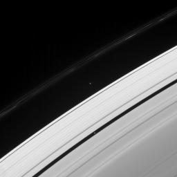 Two of Saturn's ring moons, Pan and Atlas, are captured in this view from NASA's Cassini spacecraft, along with the signature of another. This image was taken not long after Prometheus passed, leaving a trail of dark gores in the inner edge of the F ring.