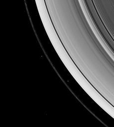 Saturn's shepherd moons, Prometheus and Pandora, gravitationally herd the F ring's particles into a narrow thread. Prometheus is inside the ring's inner edge in this image take by NASA's Cassini spacecraft on Jan. 26, 2008.