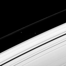Two of Saturn's ring moons, Atlas and Prometheus, draw close momentarily, before the inner of the pair moves off alone in this image from NASA's Cassini spacecraft taken on Apr. 15, 2008.