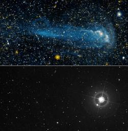 NASA's Galaxy Evolution Explorer discovered an exceptionally long comet-like tail of material trailing behind Mira -- a star that has been studied thoroughly for about 400 years.