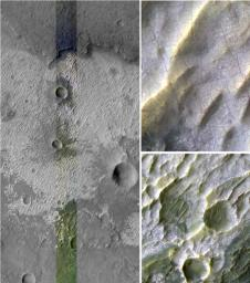 Bright Exposures of Chloride Salt on Southern Mars