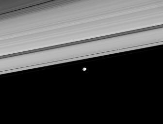 Two of Saturn's moons, Pan and Janus, coast along the outer edge of the main ring system. This image was captured by NASA's Cassini spacecraft on Aug. 22, 2008.