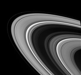 NASA's Cassini spacecraft captures Saturn's main rings in a study of light and dark. A bright knot is visible in the F ring near upper left. This image was captured on Sept.22, 2008.