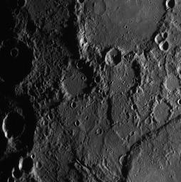 Discovering New Rupes on Mercury