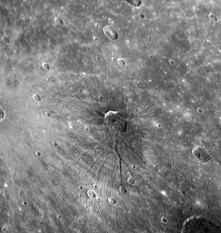 Mercury's First Fossae