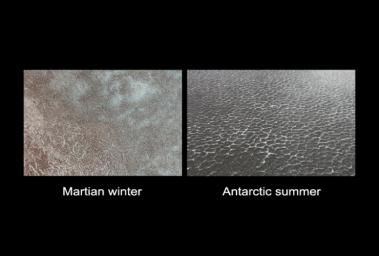 Polygon Patterned Ground on Mars and on Earth