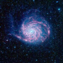 The tangled arms of the Pinwheel galaxy, otherwise known as Messier 101, are decked out in red in this new infrared image from NASA's Spitzer Space Telescope.