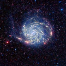 The Pinwheel galaxy, otherwise known as Messier 101, sports bright reddish edges in this new infrared image from NASA's Spitzer Space Telescope.