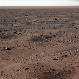 This image shows bluish-white frost seen on the Martian surface near NASA's Phoenix Mars Lander. The image was taken on Oct. 7, 2008. Frost is continued to appear in images as fall, then winter approach Mars' northern plains.