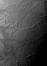 During two close flybys of Saturn's moon Enceladus in 2008, the cameras on NASA's Cassini spacecraft acquired several very high-resolution images of specific regions of the south polar terrain.