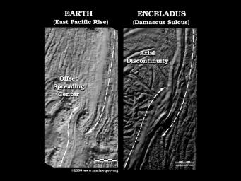 Enceladus Offset Spreading Center