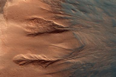 Gullies are relatively common features in the steep slopes of crater walls, possibly formed by dry debris flows, movement of carbon dioxide frost, or perhaps the melting of ground ice, as seen by NASA's Mars Reconnaissance Orbiter.