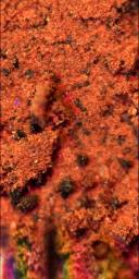 Microscope Image of a Martian Soil Surface Sample