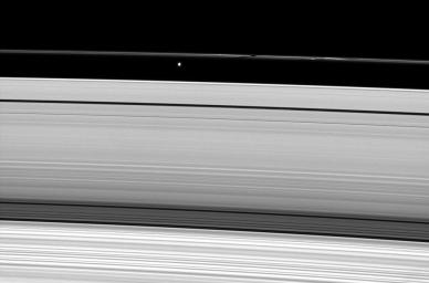 Saturn's moon Prometheus casts a shadow on the narrow F ring in this image captured by NASA's Cassini Orbiter weeks after the planet's August 2009 equinox