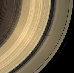 NASA's Cassini spacecraft captures the shadow of Saturn's moon Mimas as it dips onto the planet's rings and straddles the Cassini Division in this natural color image.