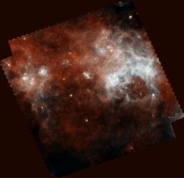 In this infrared view from the Herschel Observatory, a European Space Agency mission, blue shows the warmest dust, and red, the coolest. The choppy clouds of gas and dust are just starting to condense into new stars.