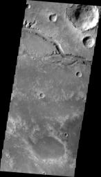 This image, taken by NASA's Mars Odyssey, shows a short section of Nirgal Vallis. Several tributaries are visible in this image.
