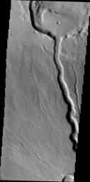 This image by NASA's 2001 Mars Odyssey shows the northwestern flank of Ceraunius Tholus, one of the smaller volcanoes in the Tharsis region.Channels dissect the flank of the volcano, including a larger channel that deposited material in Rahe Crater.