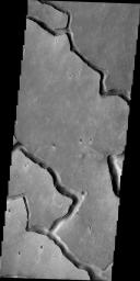 The channels in this image, taken by NASA's 2001 Mars Odyssey spacecraft, are called Hephaestus Fossae and were most likely formed by lava flow and erosion rather than being eroded by water.