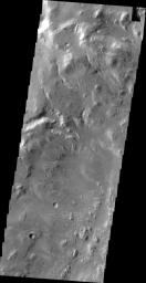 This image, taken by NASA's 2001 Mars Odyssey spacecraft, shows the western wall of Uzboi Vallis near the intersection of the vallis and Holden Crater. Many channels dissect the wall of the channel.