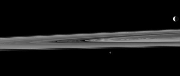 Saturn's rings occupy the space between two of the planet's moons in this image, taken by NASA's Cassini spacecraft, which shows the highly reflective moon Enceladus in the background and the smaller moon Janus in the fore.