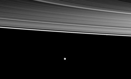 Two of Saturn's moons orbit beyond four of the planet's rings in this image from NASA's Cassini spacecraft. From the top right of the picture are the C, B , A, and thin F rings, the small moon Pandora and, near the middle of the image, the moon Enceladus.