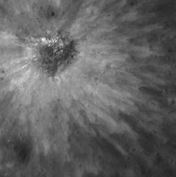 Overlapping petals of bright ejecta illustrate the complexity of ejecta emplacement, even in smaller impact events in image taken by NASA's Lunar Reconnaissance Orbiter.