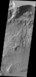 This image taken by NASA's 2001 Mars Odyssey of Ganges Chasma shows where a large portion of the canyon wall has given way and formed a landslide deposit.