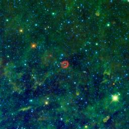 Some might see a blood-red jellyfish, while others might see a pair of lips. In fact, the red-colored object in this new image from NASA's Wide-field Infrared Survey Explorer is a sphere of stellar innards.