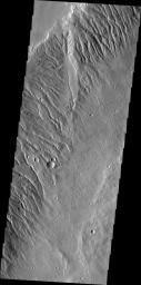 Acheron Fossae is a dissected region of rugged terrain located north of Olympus Mons. Numerous channels are visible in this image captured by NASA's 2001 Mars Odyssey.