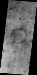 This image of Utopia Planitia, NASA's 2001 Mars Odyssey, is covered with the tracks of dust devils.
