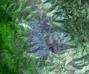 NASA's Terra spacecraft captured this image of the wildfire near Palmdale, Calif. on August 1, 2010 called the Crown fire. The burned areas appear in shades of gray in this simulated natural color image.