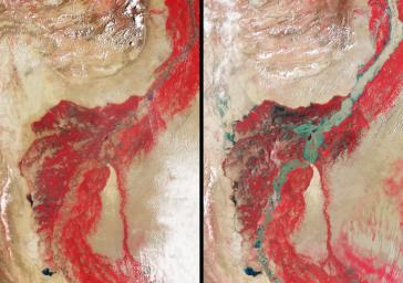 In late July 2010, flooding caused by heavy monsoon rains began in several regions of Pakistan, including the Khyber Pakhtunkhwa, Sindh, Punjab and parts of Baluchistan. This image was acquired by NASA's Terra spacecraft on August 11, 2010.