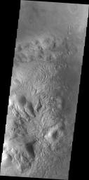 This image captured by NASA's Mars Odyssey on July 27, 2010, shows some of the dunes located on the floor of Moreaux Crater.