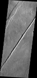 Termed both 'catena' and 'fossae,' long linear depressions created by tectonic forces are a dominate surface feature of Alba Mons in this image captured by NASA's Mars Odyssey spacecraft.