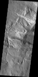 Channels dissect the complex region of Acheron Fossae, located north of Olympus Mons in this image captured by NASA's Mars Odyssey.
