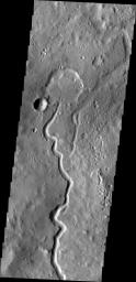 A branch of Nanedi Valles entered a crater and deposited a delta that fills the majority of the crater floor. This image was captured by NASA's Mars Odyssey.