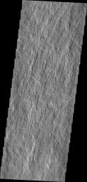 This image from NASA's Mars Odyssey shows channelized flows on the southwestern flank of the volcano.