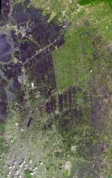 The flooding from the Chao Phraya River, Thailand, was draining slowly when this image was acquired on Nov. 17, 2011, by NASA's Terra spacecraft.