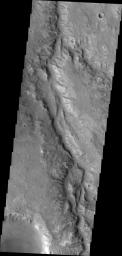 This image from NASA's Mars Odyssey is of an unnamed channel in Margaritifer Terra.