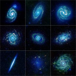A colorful collection of galaxy specimens from NASA's Wide-field Infrared Survey Explorer mission showcases galaxies of several types, from elegant grand design spirals to more patchy flocculent spirals.