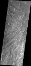 Channels dissect the hillside of Terra Sirenum in this image from NASA's 2001 Mars Odyssey spacecraft.