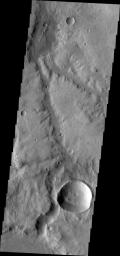 Marikh Vallis is the name given to the channels seen in this image of Noachis Terra as seen by NASA's 2001 Mars Odyssey spacecraft.